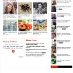 Dmitri Chavkerov Thoughs on Healthy Forex Babies in digital journal